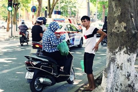La saison des fruits de pancovier a Hanoi hinh anh 2