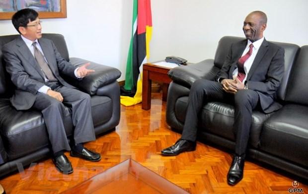 Le Mozambique salue les entreprises vietnamiennes venant investir sur son sol hinh anh 1
