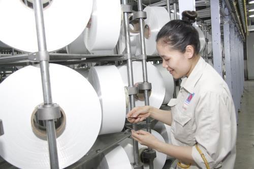Textile : PVTex ne sera pas affectee par les mesures anti-dumping de la Turquie hinh anh 1