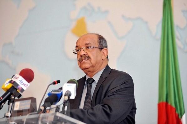 Acceleration du developpement des relations entre le Vietnam et l'Algerie hinh anh 1