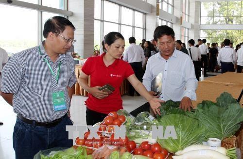 Promotion de l'import-export des produits agricoles entre Lao Cai et le Yunnan hinh anh 1