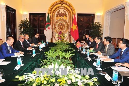Pour dynamiser les relations de cooperation Vietnam-Algerie hinh anh 1