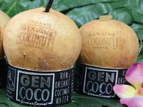 La Thailande renforcera le controle sur les importations de noix de coco hinh anh 1