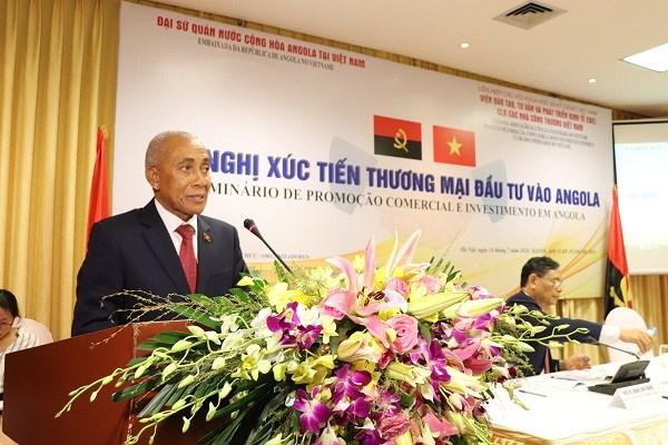 L'Angola invite les entreprises vietnamiennes a investir dans son economie hinh anh 1