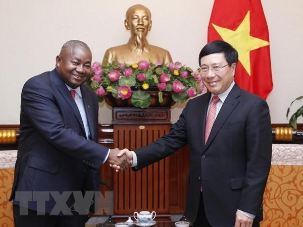 Le vice-Premier ministre Pham Binh Minh recoit le nouvel ambassadeur mozambicain hinh anh 1