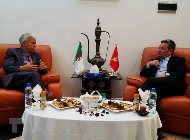 Le Vietnam promeut le commerce et l'investissement en Algerie hinh anh 1