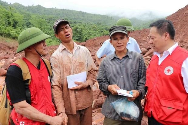 La Croix-Rouge du Vietnam et la FIRC resserrent leur cooperation hinh anh 1