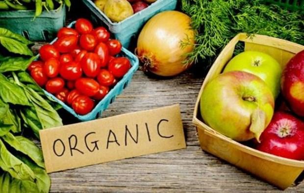 L'Indonesie renforce l'exportation de produits bio hinh anh 1
