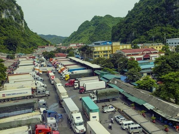 Le Vietnam devient le plus grand partenaire commercial de la Chine au sein de l'ASEAN hinh anh 1