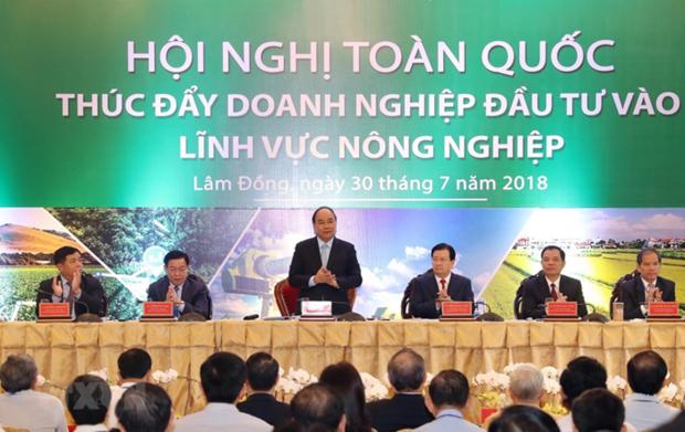 Premiere conference nationale sur la promotion des investissements dans l'agriculture  hinh anh 1