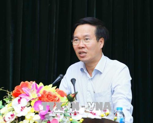 Promotion du role de passerelle d'amitie des organes de representation du Vietnam a l'etranger hinh anh 1