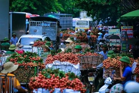 Vietnam - Chine: de nombreuses opportunites de cooperation commerciale hinh anh 2