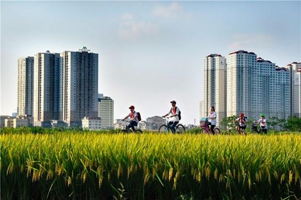 Exposition de photos sur la vie en banlieue de Hanoi hinh anh 1