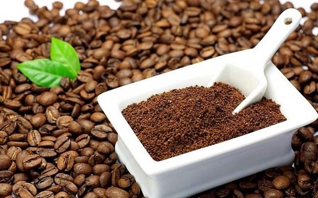 Necessiter d'elever la valeur ajoutee pour la filiere cafe du Vietnam hinh anh 1