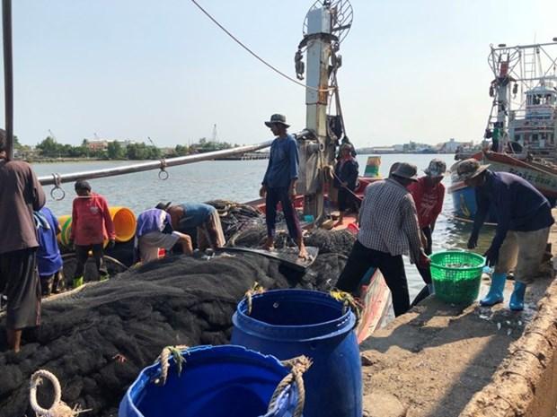 Travailleurs migrants pour la peche: la Thailande cooperera avec les pays voisins hinh anh 1