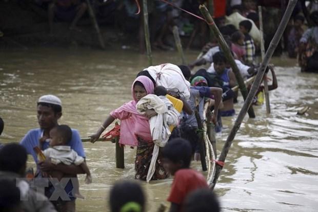 Myanmar-Bangladesh : rapatriement rapide des refugies rohingyas hinh anh 1