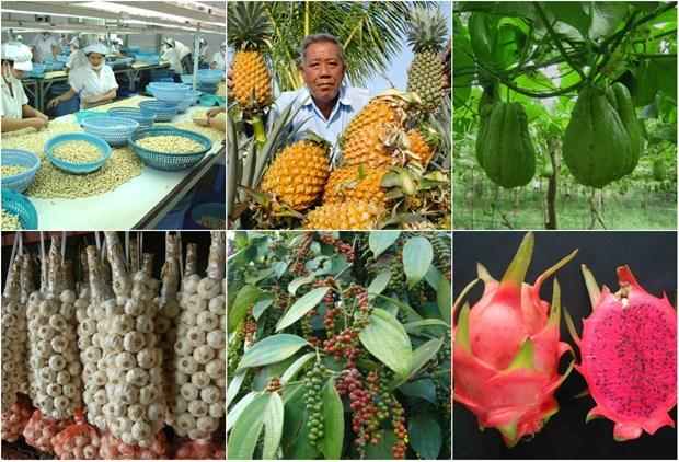 IGP: Vietnam au 2e rang des pays Sud-Est asiatiques ayant le plus de produits agricoles proteges hinh anh 1