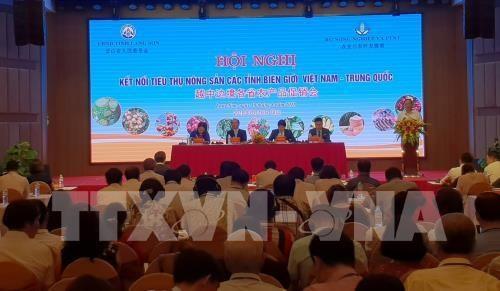 Promouvoir le commerce de produits agricoles avec la Chine hinh anh 1