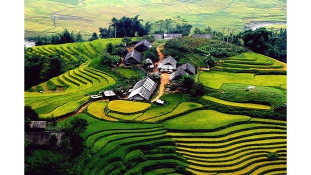 Vietnam : N°1 des lieux incontournables a visiter hinh anh 2