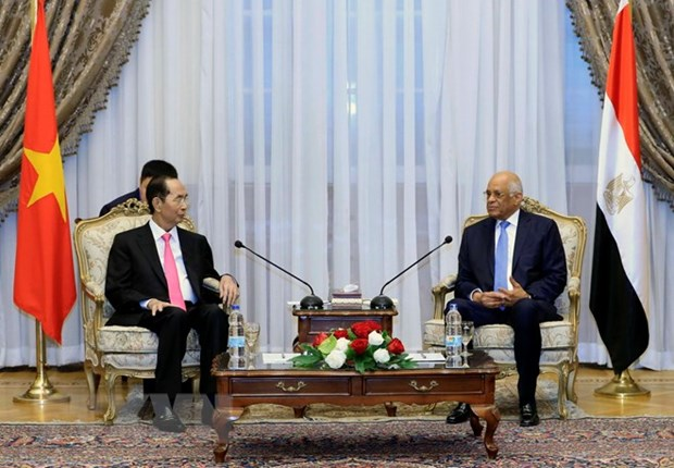 Le Vietnam attache de l'importance a ses relations d'amitie traditionnelle avec l'Egypte hinh anh 1