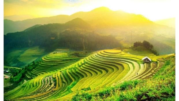 Sur la route des rizieres en terrasses a valeur patrimoniale hinh anh 1