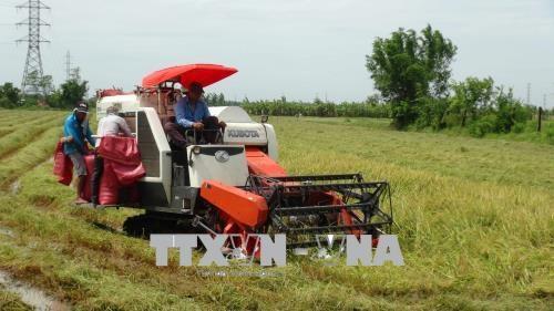 Vietnam et Japon partagent des experiences de developpement des produits agricoles hinh anh 1