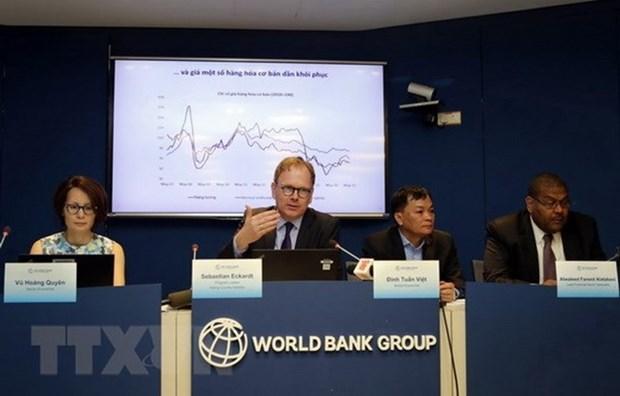 Les IDE, un des grands succes du bilan economique du Vietnam, selon un expert de la BM hinh anh 1
