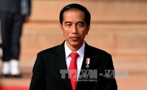 Vietnam-Indonesie : promotion des potentiels de developpement economique hinh anh 1