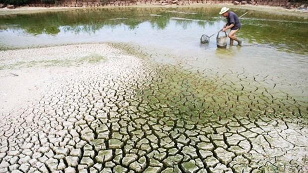 Le Vietnam accueillera un Dialogue de haut rang sur les changements climatiques hinh anh 1