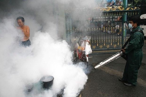 Bangkok decrete une alerte a la dengue hinh anh 1