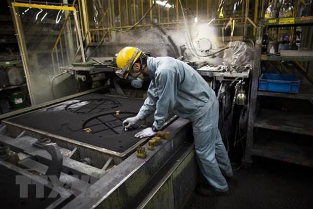 Les travailleurs vietnamiens sont apprecies au Japon hinh anh 1
