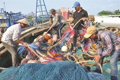 L'avertissement ''carte jaune'' affecte l'exportation de fruits de mer vietnamiens vers l'UE hinh anh 1