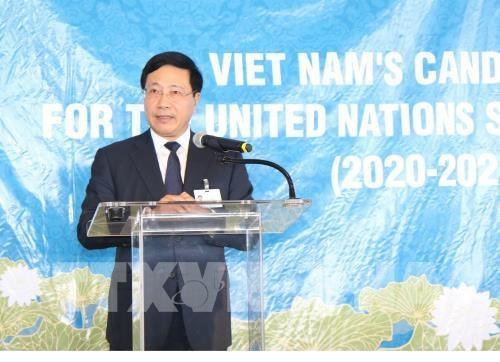 Mobilisation des pays pour soutenir la candidature du Vietnam au Conseil de securite de l'ONU hinh anh 1
