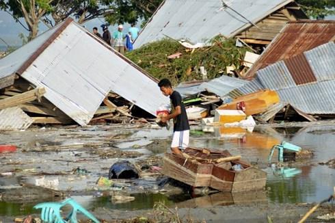 Aucune information sur les Vietnamiens morts ou blesses lors du seisme et du tsunami en Indonesie hinh anh 1
