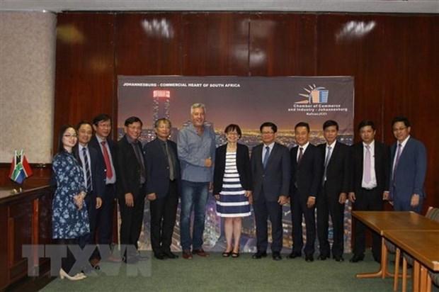 Da Nang souhaite promouvoir ses relations commerciales avec des partenaires sud-africains hinh anh 1