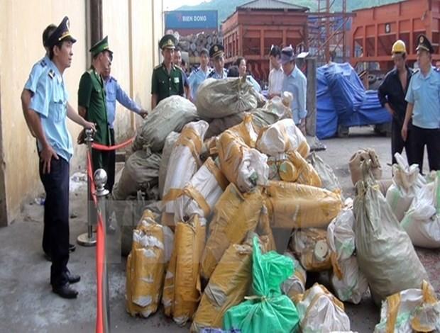 Saisie d'un grand lot de defenses d'elephants et d'ecailles de pangolin a Hanoi hinh anh 1