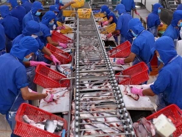 Bientot la Foire aux produits aquatiques de Hanoi hinh anh 1