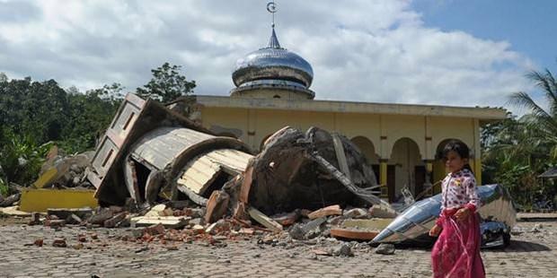 Seisme en Indonesie: le Vietnam s'efforce d'aider ses 10 etudiants a quitter Palu hinh anh 1