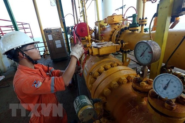 Les IDE contribuent au developpement du secteur petrolier du Vietnam hinh anh 1