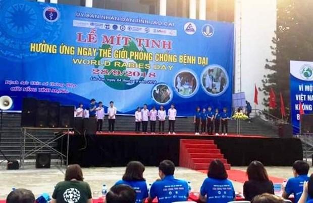 Journee mondiale contre la rage celebree a Lao Cai hinh anh 1