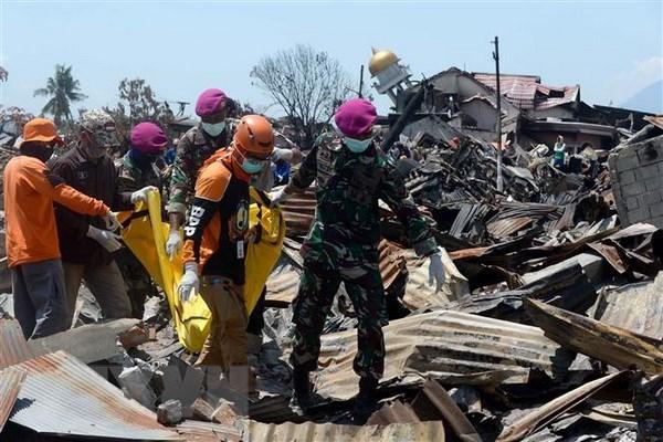Seisme et tsunami en Indonesie: etablir un site web pour rechercher les proches perdus hinh anh 1