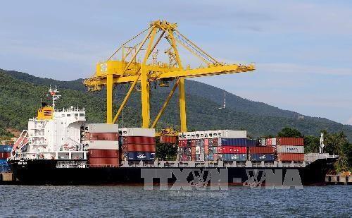 Les efforts de la ville Da Nang pour developper l'economie maritime hinh anh 1