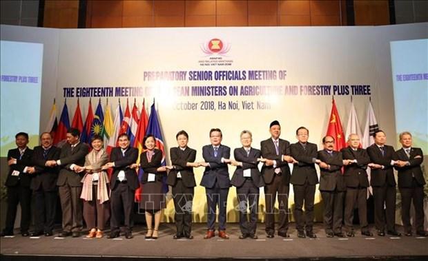 Conference des hauts officiels des secteurs agricole, sylvicole et aquatique de l'ASEAN+3 hinh anh 1