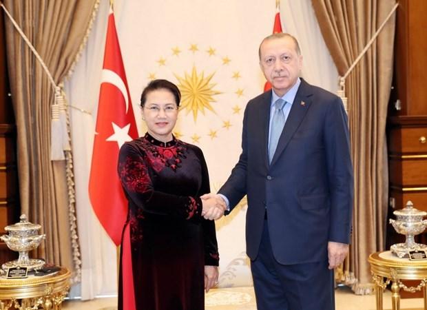 Le Vietnam tient en haute estime les relations avec la Turquie hinh anh 1