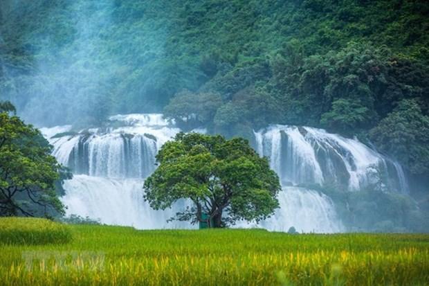 Cao Bang : ouverture de la 2e fete touristique de la cascade de Ban Gioc hinh anh 1