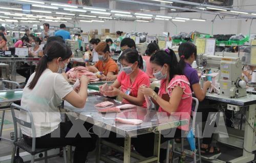 La province de Long An s'efforce d'attirer davantage des investisseurs etrangers hinh anh 1