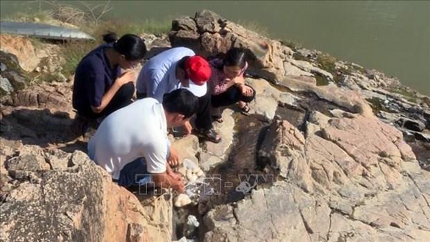 La Hongrie soutient Phu Yen dans l'exploitation d'une source d'eau thermale hinh anh 1