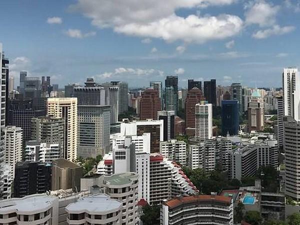 Singapour donne la priorite a la reforme economique hinh anh 1