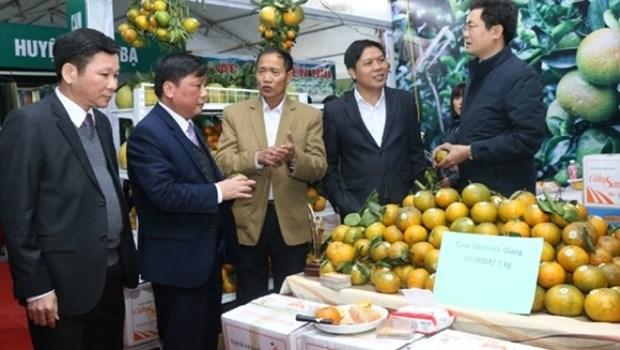 Promotion du commerce des specialites regionales du Vietnam hinh anh 1