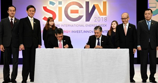 ASEAN et IRENA s'emploient a promouvoir le developpement des energies renouvelables hinh anh 1
